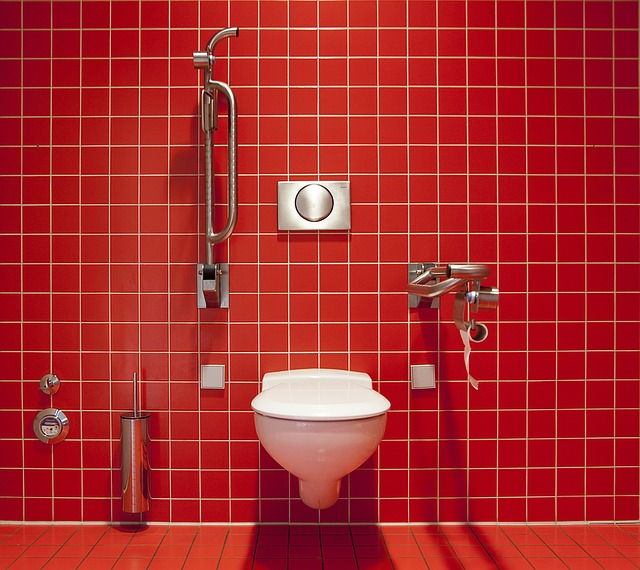 wc pro invalidy.jpg