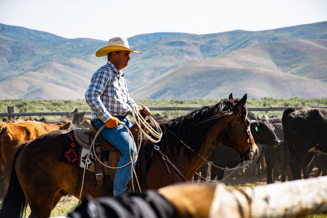 Westernový jezdec